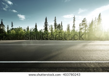asphalt road in forest - stock photo