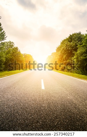 Asphalt road in green forest. Belarus. Sunset. - stock photo
