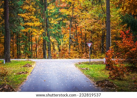 Asphalt road through autumn State Reserve. - stock photo