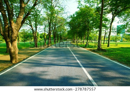 asphalt walking way in green public park with morning light use for fresh and good environment garden for healthy life - stock photo