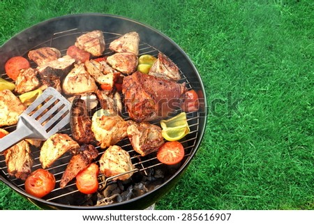 Assorted BBQ Roasted  Pork And Chicken Meat With Vegetables On The Hot Charcoal Grill With Smoke. Backyard Cookout Scene. - stock photo