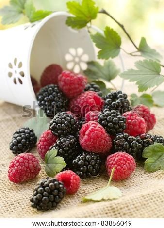 Assorted berries in bucket on natural background. Selectve focus - stock photo