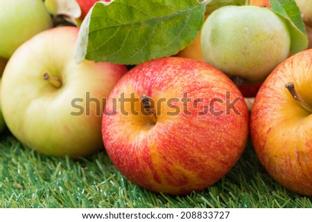 assorted fresh garden apples on green grass, close-up, horizontal - stock photo