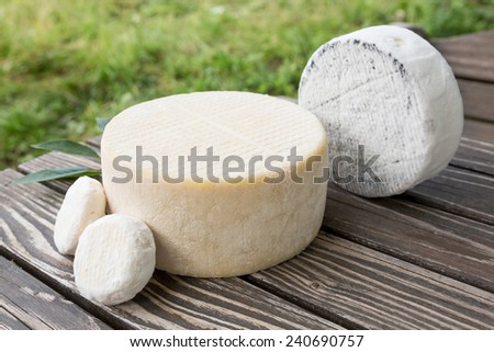 Assorted goat cheese lying on a wooden table boards on s farm - stock photo