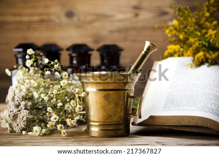 Assorted natural medical herbs and mortar  - stock photo