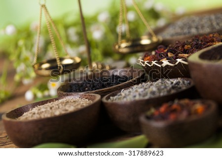 Assorted natural medical, herbs and mortar - stock photo