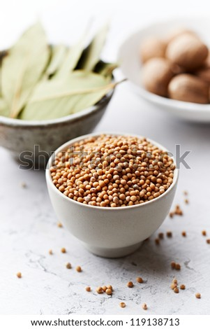Assorted spices in small containers - stock photo