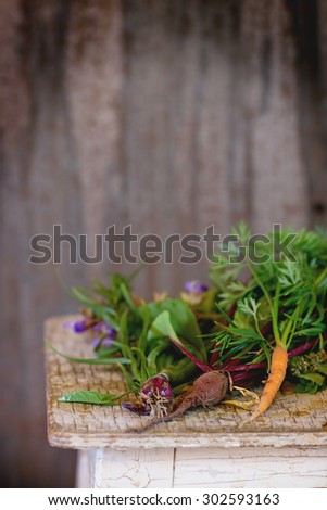 Assortment of fresh herbs mint, oregano, thym, blooming sage and young vegetables beetroot and carrot over old wooden stool as background. Natural day light. With copyspace on top - stock photo