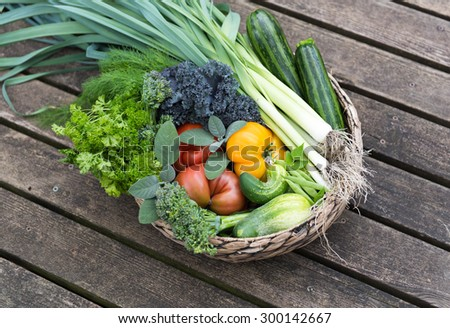 Assortment of Fresh Vegetables and Fruits in Basket  - stock photo