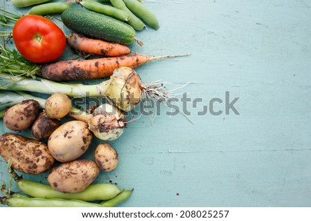 Assortment of fresh vegetables with text area on right - stock photo