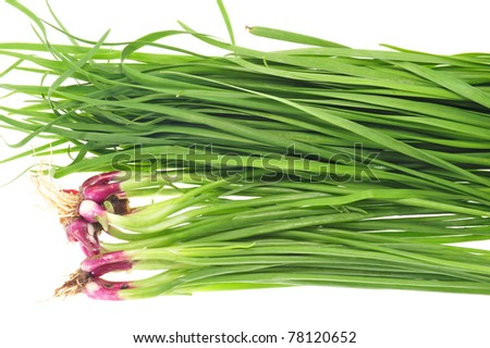 Assortment Of Green Chives And Spring Onions - stock photo