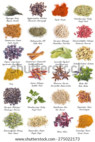 Assortment of herbs and spices for cooking isolated on a white background - stock photo