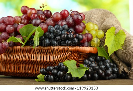 assortment of ripe sweet grapes in basket, on green background - stock photo