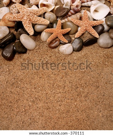 Assortment of starfish, seashells and smooth beach rocks in the sand - copy space - stock photo