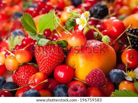 Assortment of  summer fresh berries - stock photo