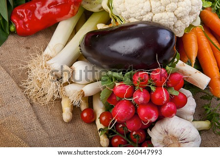Assortment of various fresh organic vegetables from the garden - stock photo