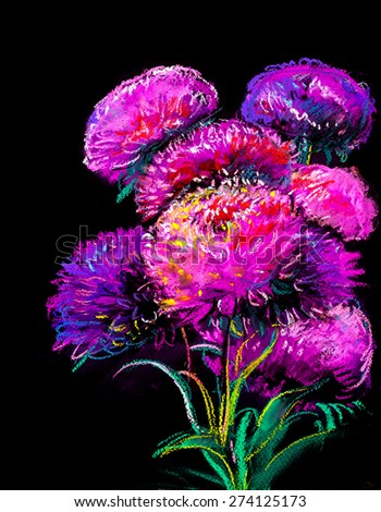 Aster Autumn Flowers on black background  - stock photo