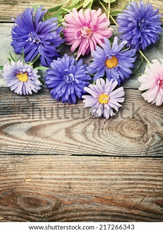 Aster flowers bouquet in retro style - stock photo