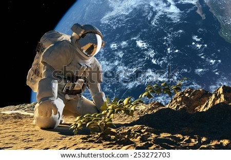 "Astronaut on his knees in front of a bush.""Elemen ts of this image furnished by NASA"" - stock photo"