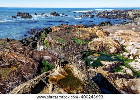 At sunrise Blue sky, tidal pools, green algae, rock-boring mollusk holes, & unusual geological formations, along the rugged Big Sur coastline, near Monterey, CA. on the California Central Coast - stock photo