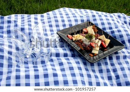 At the picnic. - stock photo