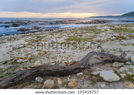 At the shore of the Cape of Good Hope, South Africa - stock photo