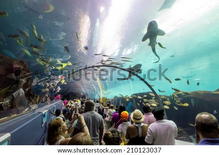 ATLANTA, GEORGIA - August 2:Interior of Georgia Aquarium with the people, the world's largest aquarium holding more than 8 million gallons of water in Atlanta, Georgia on August 2, 2014 - stock photo