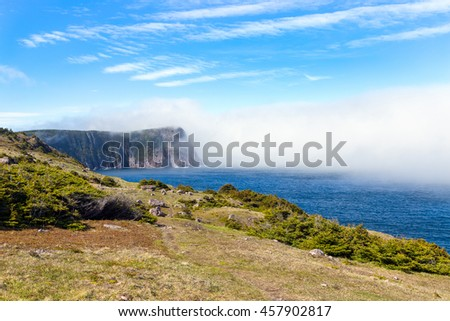 Atlantic ocean and steep cliffs on misty shore on the East Coast Trail in Newfoundland north of St. Johns, Canada.  - stock photo
