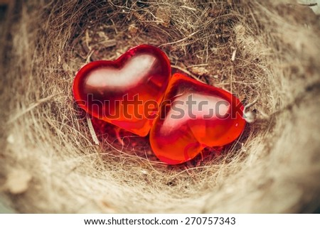 Attract. Two red hearts in bird's nest on wooden board - stock photo