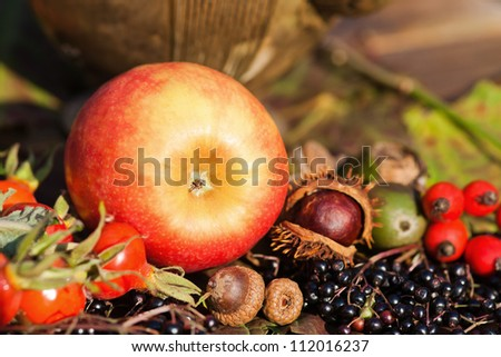attractive autumnal picture of an apple and other autumnal fruits - stock photo