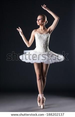 Attractive female ballet dancer posing in studio - stock photo