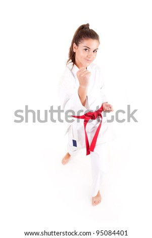 Attractive young sexy women with a kimono in a karate pose isolated on white - stock photo