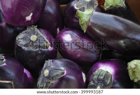 Aubergine (Solanum melongena) aka egg plant or melongene or garden egg vegetables vegetarian food - stock photo