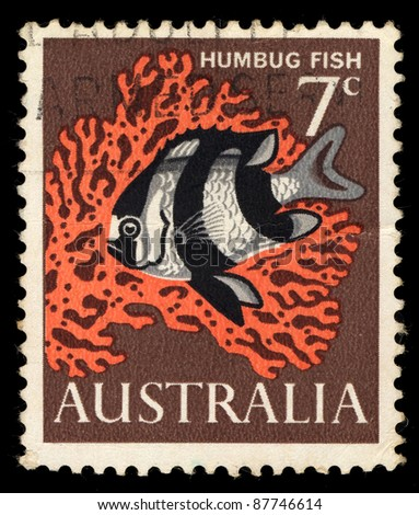 AUSTRALIA - CIRCA 1966: A stamp printed in Australia shows image of a humbug fish, circa 1966 - stock photo