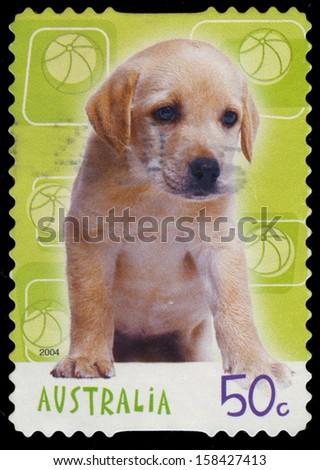 AUSTRALIA - CIRCA 2004: A Stamp printed in AUSTRALIA shows the Labrador Retriever Puppy, Designs series, circa 2004 - stock photo