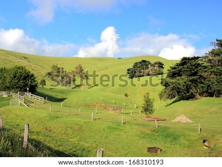 Australian country landscape - stock photo