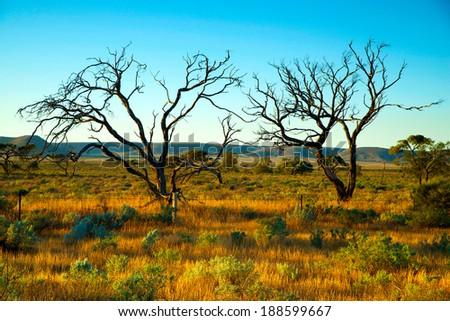Australian desert, Aboriginal lands - stock photo