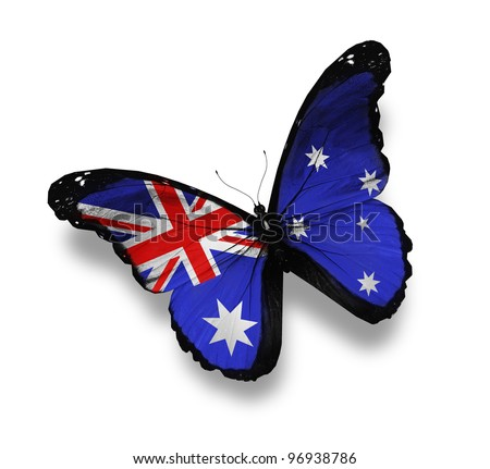 Australian flag butterfly, isolated on white - stock photo