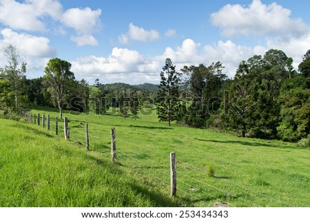 Australian hinterland with fence and grazing land - stock photo