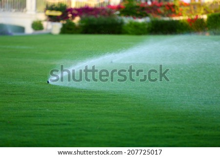 Automatic sprinklers watering grass - stock photo