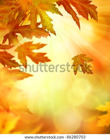 Autumn Abstract Background - stock photo