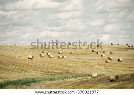 Autumn Agricultural Farm Field in Sunny Day - stock photo