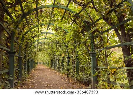 Autumn archway in the garden. - stock photo