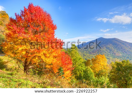 Autumn at Blue Ridge Parkway. - stock photo