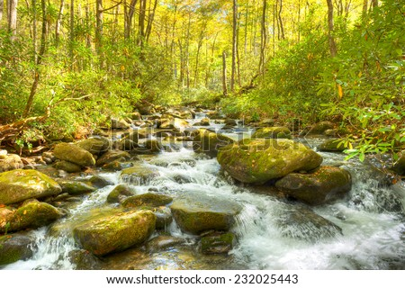 Autumn at Roaring Fork creek in the Smokies. - stock photo