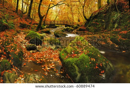 Autumn at Stockghyll in the English Lake District - stock photo