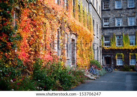 Autumn at the Trinity college, Dublin, Ireland. - stock photo