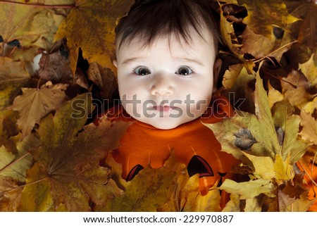 Autumn baby - stock photo