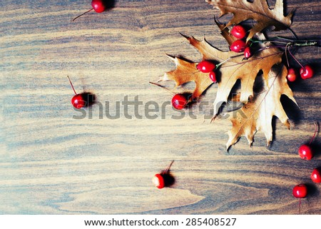 Autumn background/Autumn berries and leaves over wooden background/ Thanksgiving day concept - stock photo