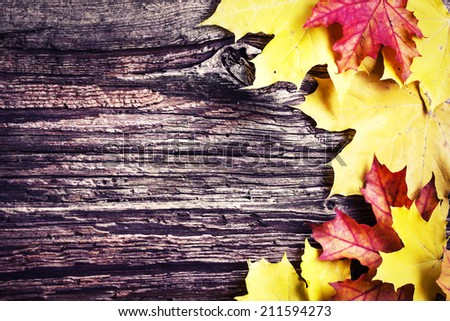 Autumn background/Autumn leaves over wooden background/ Thanksgiving day concept - stock photo